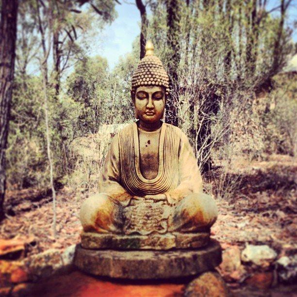 Meditate or Die Masterclass